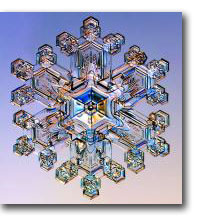 {snow} Snow crystal  Kenneth Libbrecht (Caltech)