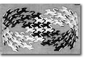 M. C. Escher, Swans (1956)